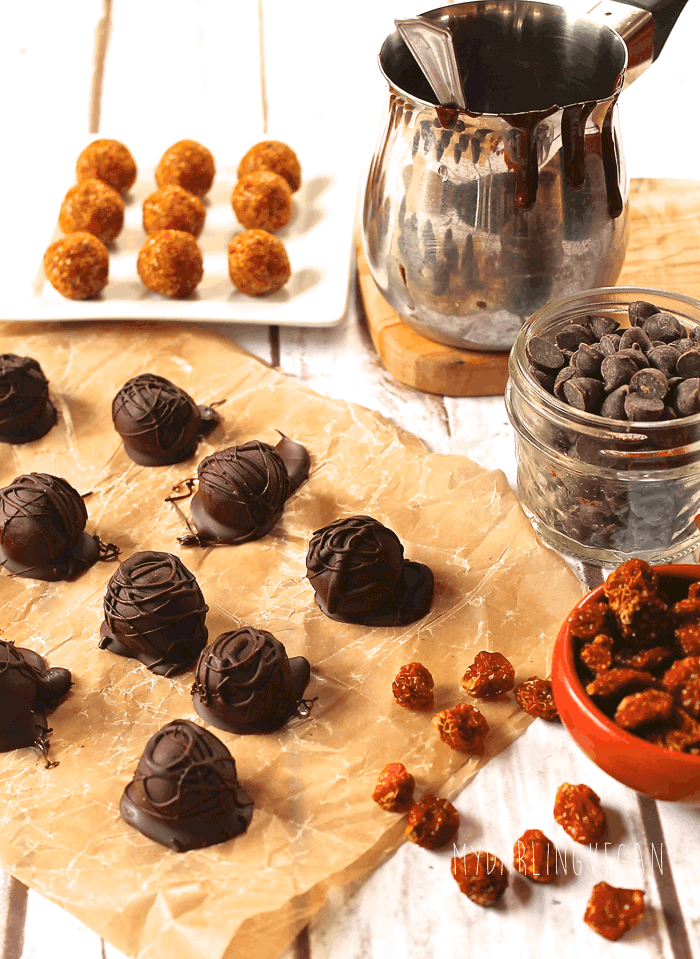 Inca Berry & Coconut Chocolate Truffles