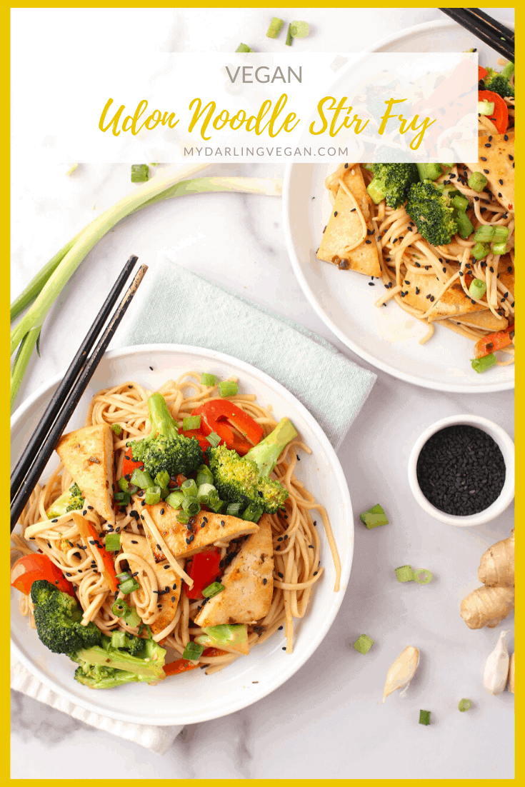 Delicious Udon Noodle Stir Fry made with crispy tofu, broccoli, peppers, and carrots. It's covered in a sweet ginger sauce for a hearty vegan and gluten-free meal that the whole family will love.