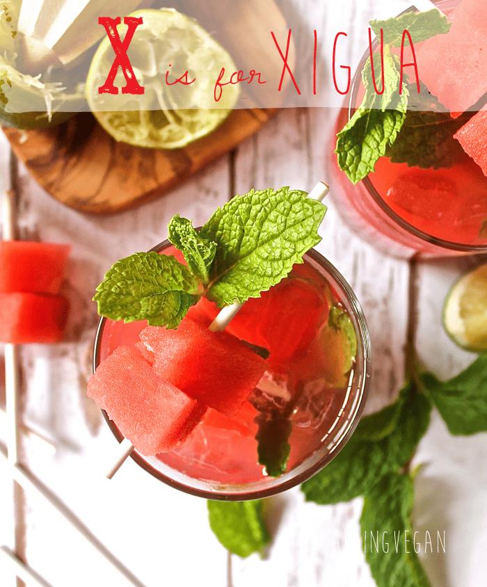 watermelon-mojito4
