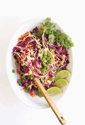 Cilantro Lime Vegan Cabbage Salad