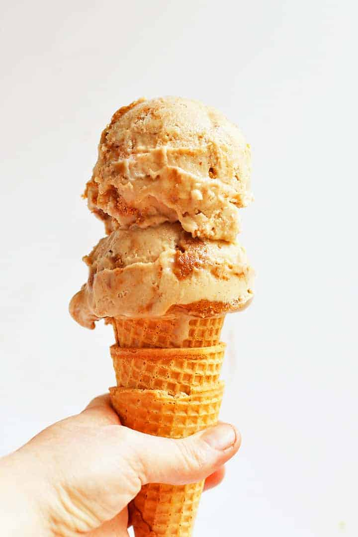 Vegan Snickerdoodle Ice Cream