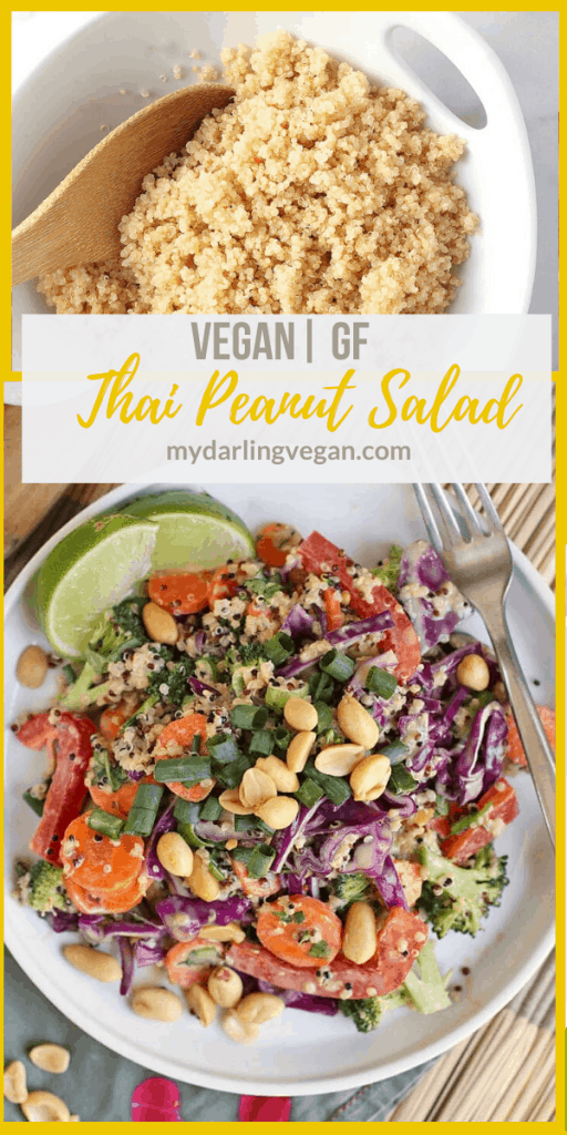 You're going to love this Thai Quinoa Salad! It is made with tri-color quinoa, fresh vegetables, and spicy peanut sauce for a delicious and healthy vegan and gluten-free meal.
