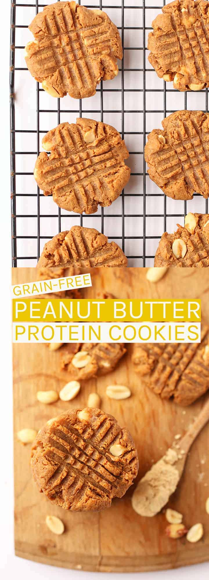 These vegan and gluten-free Peanut Butter Protein Cookies are made with just 6 ingredients, one bowl, and under 20 minutes for a satisfying grain-free midday snack. #vegan #glutenfree #grainfree