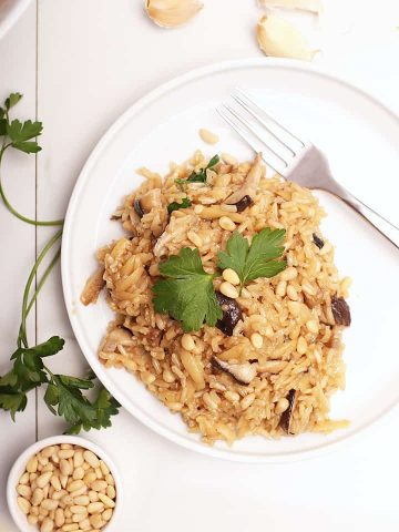 Rice Pilaf on a white plate