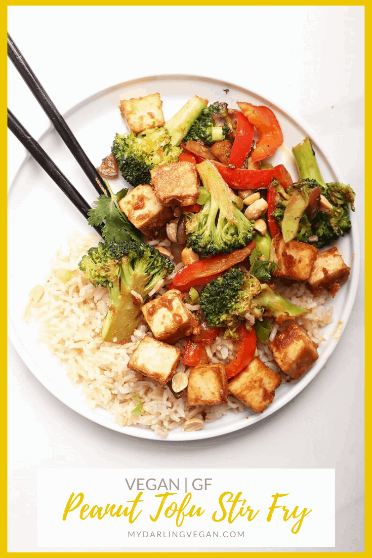 This Vegetable Stir Fry is made with sautéed broccoli and peppers and mixed with a Ginger Peanut Sauce for a delicious, hearty, and healthy tofu dinner recipe.