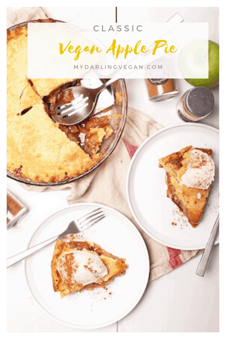 This classic vegan apple pie is the perfect sweet and tart filling baked inside a buttery crust. The filling can be made in advance for a quick and easy fall dessert the whole family will love.