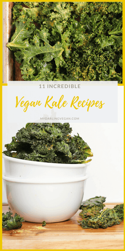 11 INCREDIBLE Vegan Kale Recipes for kale lovers and skeptics alike. Everything from kale salad to kale chips to green smoothies, there is a wholesome recipe for everyone. Most recipes are gluten-free or gluten-free adaptable.