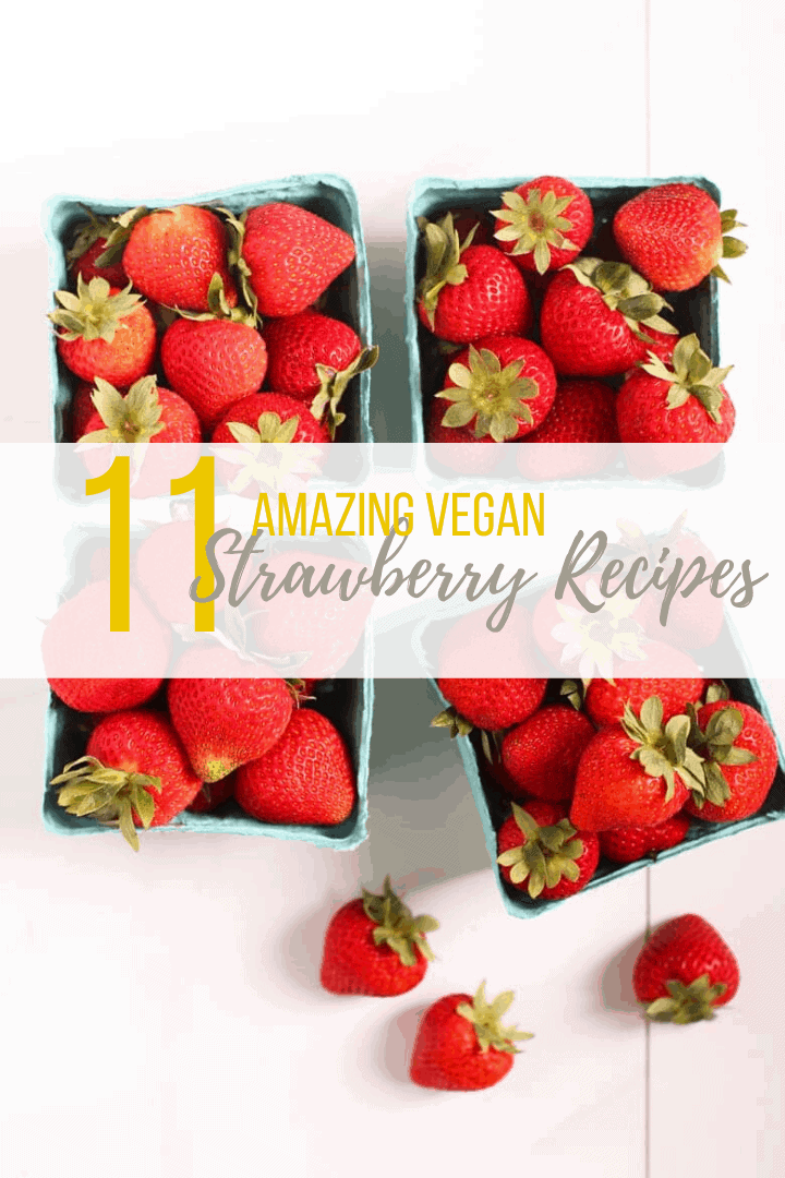 Strawberry season is upon us! Let's celebrate with these 9 Refreshing Vegan Strawberry Recipes. Everything from Classic French Toast Breakfast to Strawberry Shortcake Dessert, there is a recipe for everyone.