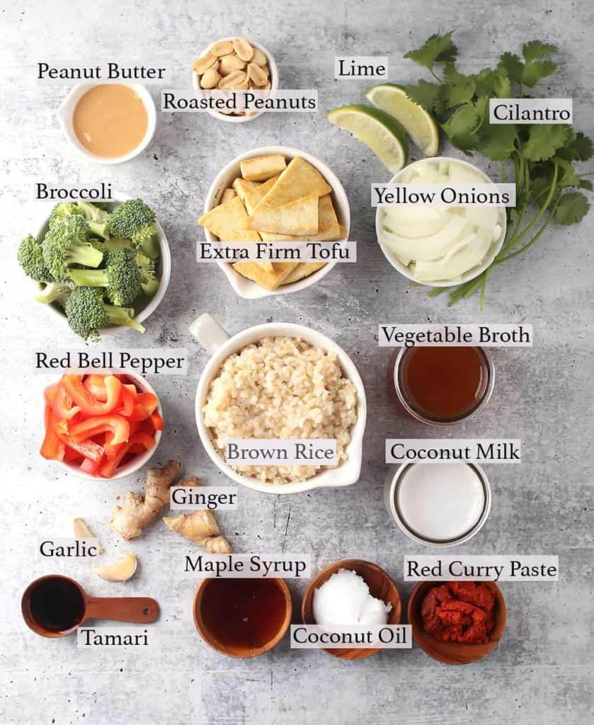 Ingredients measured out and placed on a concrete countertop